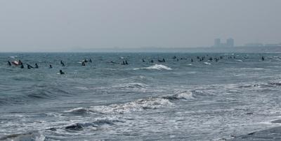 Surfer004sz1200
